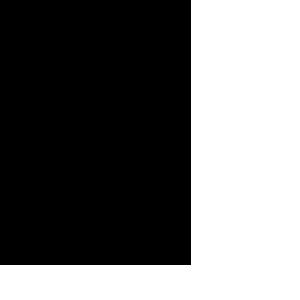 Metodo Mézières
